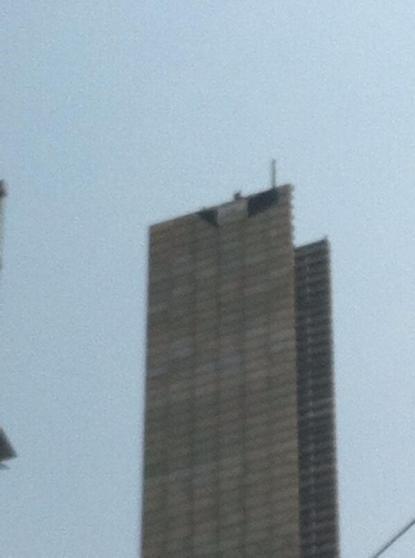 Bandera negra en lo alto de la suavicrema